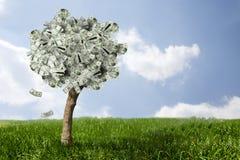 Verbazende geldboom op gras met dalende bladeren Royalty-vrije Stock Foto's