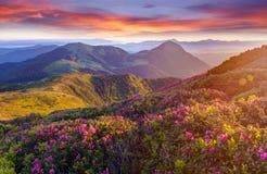 Verbazende kleurrijke zonsopgang in bergen met gekleurde wolken en pi Stock Foto's