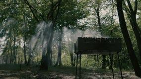 Verbazende langzame motie in het bos - rook van bbq en daglicht stock videobeelden