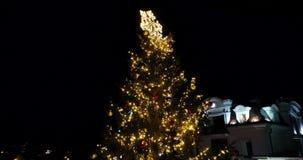 Verbazende luchtmening van Nacht fairytale Kerstboom, Uzhgorod, de Oekraïne, 4k stock video