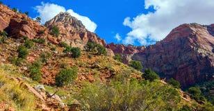Verbazende mening van Bewaker Trail, Zion National Park, Utah stock foto