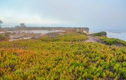 Verbazende mening van Vreedzame kust dichtbij Santa Barbara, Californië royalty-vrije stock afbeelding