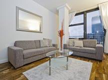 Verbazende moderne woonkamer Royalty-vrije Stock Afbeeldingen