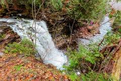 verbazende natuurlijke landschapsmening, Halton-de rivier van het Heuvels de kleine water daling en in de herfsthout met mensen o royalty-vrije stock foto's