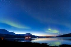 Verbazende noordpoolervaring in Tromso, Noorwegen Royalty-vrije Stock Afbeelding