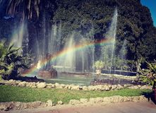 Verbazende regenboog Stock Afbeelding