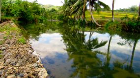 Verbazende Rivier in Tasikmalaya royalty-vrije stock foto