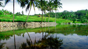 Verbazende rivier in Tasikmalaya, West-Java, Indonesië Stock Afbeeldingen