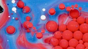 Verbazende rode en blauwe bellen van verf op de olieoppervlakte Verf in olie stock video