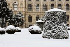 Verbazende Sneeuwval in Wenen, Oostenrijk Stock Afbeeldingen