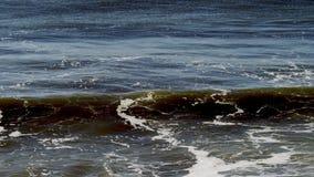 Verbazende Vreedzame oceaangolven stock video