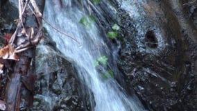 Verbazende waterval in het bos stock videobeelden