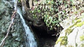 Verbazende waterval in het bos stock video