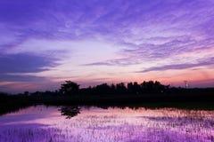 Verbazende zonsondergang Stock Afbeelding