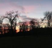 Verbazende zonsondergang over de rivier achter de bomen Royalty-vrije Stock Afbeeldingen