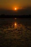 Verbazende zonsondergang over het overzees Royalty-vrije Stock Afbeeldingen