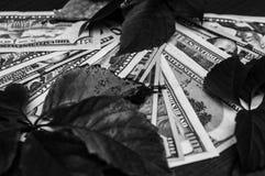 Verbazende zwart-witte foto van Amerikaanse bankbiljetten stock fotografie