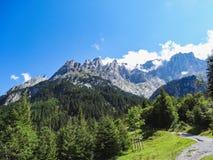 Verbazende Zwitserse Alpen Wetterhorn in de Zomer Grindelwald stock fotografie