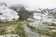 Verbella Alp With Snow no verão, Áustria Foto de Stock Royalty Free
