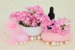 Verbena Aromatherapy Royalty Free Stock Image
