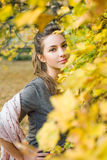 Verbergende de herfstschoonheid Stock Fotografie