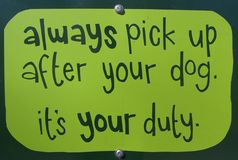 Verbeter na uw hond Stock Foto