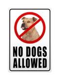 Verbiedend toegestaan teken met tekst geen honden royalty-vrije stock fotografie