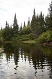 Verbiegen Sie in Elch-Fluss, mit geziertem Nordwald, Adirondack MoU Lizenzfreies Stockbild