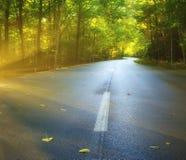 Verbiegende Straße im sonnigen Wald des Herbstes Lizenzfreies Stockfoto