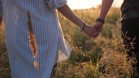 Verbinden Sie das Gehen in die Rasenfläche in den Sonnenstrahlen stock footage
