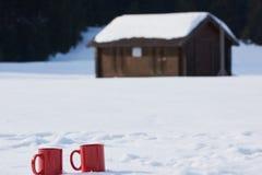 Verbinden Sie Haben des Spaßes und das Gehen in Schneeschuhe Stockbilder