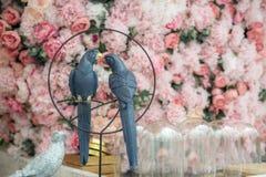 Verbinden Sie von den Wellensittichen mit einem schönen Hintergrund von pinl Blumen, Liebeskonzept lizenzfreies stockfoto
