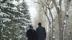 Verbinden Sie Weg am Schnee-Tag stock video footage
