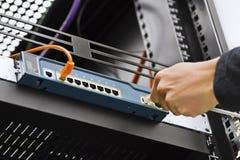 Verbindende Netwerkkabel aan Schakelaar Stock Foto