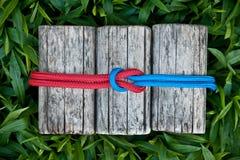 Verbindende Seile auf einem natürlichen Hintergrund Lizenzfreies Stockfoto
