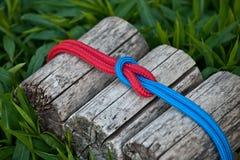Verbindende Seile auf einem natürlichen Hintergrund Lizenzfreies Stockbild