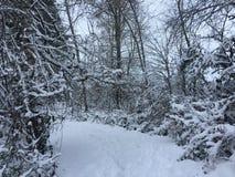 Verbindende sneeuw Royalty-vrije Stock Foto's