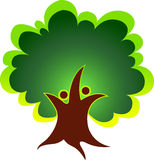 Verbindet Baum Stockbild