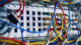 Verbindungsschlitze der Server mit eingesteckten Kabeln stock video footage