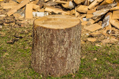 Verblüffen Sie auf dem Hintergrundstapel des Holzes im Dorf Lizenzfreies Stockbild