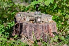 Verblüffen Sie im Wald, ein vor--duptout Wagen auf einem Stumpf, ein Begriffsfoto über Natur und Zivilisation lizenzfreie stockfotos
