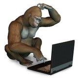 Verblüffter Gorilla mit einem Laptop Stockfotografie