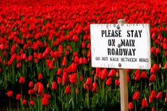 Verblijf op hoofdrijwegteken met rood tulpengebied Stock Fotografie