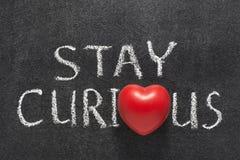 Verblijfs nieuwsgierig hart Stock Afbeelding