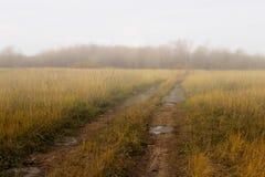 Verboden plattelandsweg op gebied bij de herfstfogy ochtend. Royalty-vrije Stock Foto's