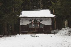 Verborgen die weg Bergtempel in de Bergen in sneeuw rond Yudanaka, Japan worden behandeld stock afbeeldingen