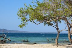 Verborgen paradijs, Venezolaans strand Royalty-vrije Stock Foto