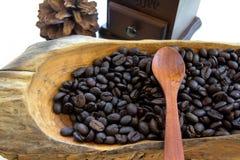 Verbreiten Sie Kaffeesamen auf dem hölzernen Löffel, der auf weißem Hintergrund lokalisiert wird Stockbild