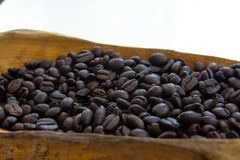 Verbreiten Sie Kaffeesamen auf dem hölzernen Löffel, der auf weißem Hintergrund lokalisiert wird Lizenzfreies Stockbild