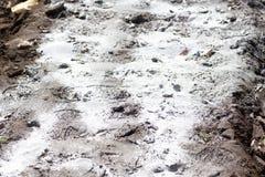 Verbreiten Sie Pulver des Kalksteins Stockbilder